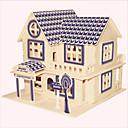 abordables Accesorios para PS4-Puzzles de Madera Edificio Famoso / Arquitectura China / Casa Nivel profesional De madera 1pcs Niños Chico Regalo