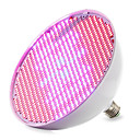 cheap Grow Lights-1pc 30 W 14400-16000M E26 / E27 Growing Light Bulb 800 LED Beads SMD 2835 Red / Blue 85-265 V / 1 pc / RoHS / FCC