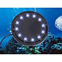 ieftine Pompe si Filtre pentru Acvariu-Acvarii Lumină LED Schimb Lampa cu LED 220-240 V V Plastic