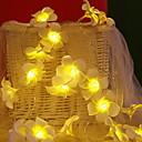 abordables Accessoires à Thé-6m Guirlandes Lumineuses 40 LED Blanc Chaud Décorative 220-240 V 1 set