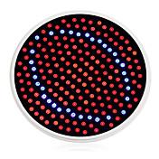 1500 lm E26/E27 Voksende lyspærer 200 leds Blå Rød AC 85-265V