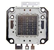 Недорогие -ZDM ™ 20w RGB свет интегрированный модуль (красный: 13-15v, зеленый: 18-20V, синий: 18-20V)