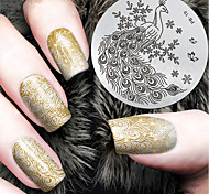 2016 Latest Version Fashion Pattern Peacock Nail Art Stamping Image Template Plates