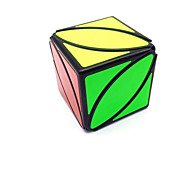 cheap -Rubik's Cube Ivy Cube 2*2*2 Smooth Speed Cube Magic Cube Puzzle Cube Matte Sticker Square Gift Unisex