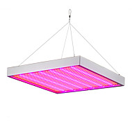 cheap -E27 50W LED Grow Lights 500 SMD 2835 3000-3600 lm Red Blue AC85-265 V