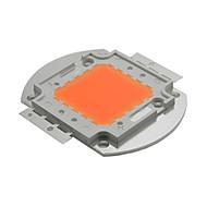 ywxlight® 100w yüksek güç led fişleri bitki büyüyen ışık lc dc 30 - 34v