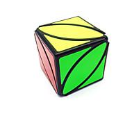 halpa Harrastukset-Rubikin kuutio Ivy Cube 2*2*2 Tasainen nopeus Cube Rubikin kuutio Puzzle Cube Matte Lahja Unisex