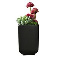 abordables Flores Artificiales-Flores Artificiales 1 Rama Clásico Moderno / Contemporáneo / Estilo Simple Flores eternas / Plantas suculentas Flor de Mesa