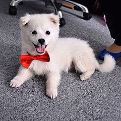 Cat Dog Tie/Bow Tie Dog Clothes Cotton Spring/Fall Summer Cute Wedding Bowknot Orange Purple Red Blue Pink Costume For Pets