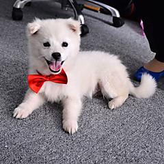Koty Psy Krawat/Muszka Ubrania dla psów Lato Wiosna/jesień Kokarda Urocze Ślub Orange Purple Czerwony Niebieski Różowy