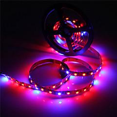 お買い得  LED 電球-zdm 5m防水5050 4赤+ 1青フルスペクトルは、光を生育させる300leds非植物防水アクアリウムの照明を成長するためのLEDストリップランプ1pc