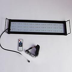 أحواض السمك ديكور حوض السمك إضاءةLED تغيير غير سام و بدون طعم مصباح LED 220V