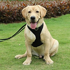 Pies Szelki Przenośny Składany Bezpieczeństwo Jendolity kolor Nylon Black Różowy
