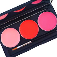 برو 3 لون الشفاه لمعان كيت ماتي للماء تغطية دائم 24 ساعة لا فرك السائل الشفاه التجميل لوحة