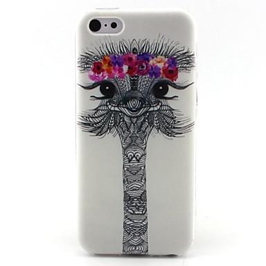 struisvogel patroon TPU materiaal zomen zachte telefoon Case voor iPhone 5c
