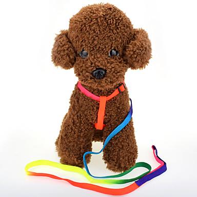 Kat Hond draagbaar Effen Nylon