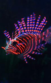 Fisk Akvariedekoration Kunstig fisk Dekorativ Harpiks