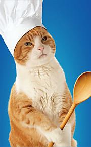 חתול כובעים ובנדנות בגדים לכלבים כותנה קיץ/אביב גיק שיק (סגנון חנון) רקום לבן תחפושות עבור חיות מחמד