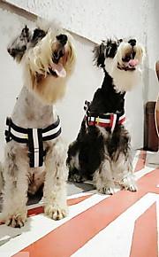 ペット用 犬 ハーネス リード 携帯用 縞柄 ストラップ テリレン ダークブルー レッド グリーン ストライプ
