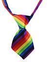 Chat Chien Cravate/Noeud Papillon Arc-en-ciel Vêtements pour Chien Eté Printemps/Automne Rayure Mariage Anniversaire