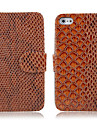 Skakeskin Print Leather Case for iPhone 4/4S