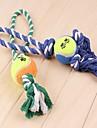 강아지 장난감 반려동물 장난감 씹는 장난감 인터렉티브 Rope 애완 동물
