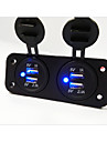 2 Hole Panel Dual USB Car Charger Socket