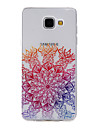 Для Кейс для  Samsung Galaxy С узором Кейс для Задняя крышка Кейс для Цветы Мягкий TPU Samsung A5(2016) / A3(2016)