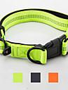 Собака Ошейники Отражение Регулируется Компактность Однотонный Нейлон Черный Оранжевый Зеленый