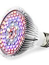 E27 Luz de LED para Estufas 78 SMD 5730 2500-3200 lm Branco Quente Vermelho Azul UV (Luz Negra) K V