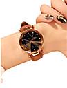 Жен. Наручные часы Кварцевый 30 m Защита от влаги Новый дизайн PU Группа Аналоговый На каждый день Мода Черный / Красный / Коричневый - Красный Зеленый Розовый